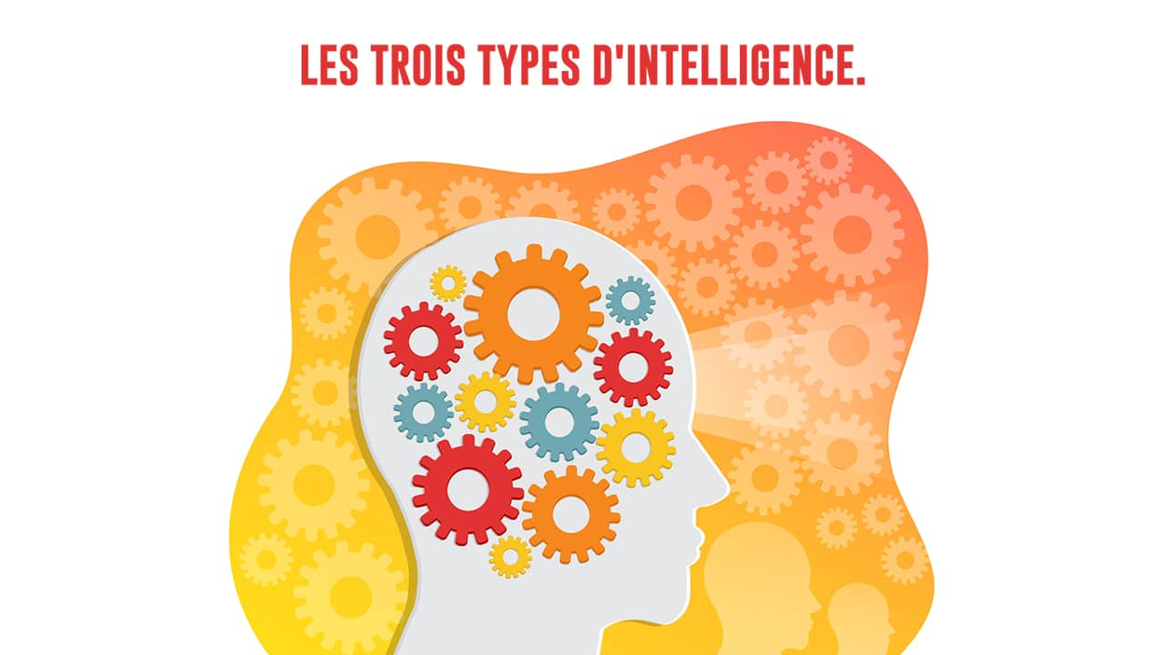 trois-types-intelligence-Edunov